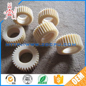 Professional Supply Abrasion Resistant Plastic Worm Gear pictures & photos