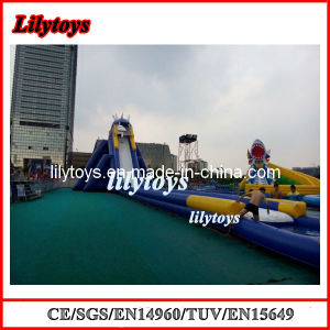 Giant Inflatable Water Slide for Adult/Water Slide pictures & photos