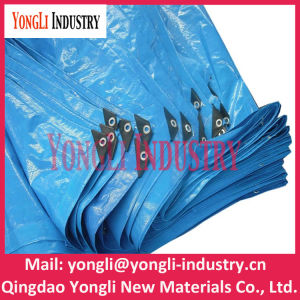 Hot Sales Portable Blue UV Coated 6mil Poly Tarp pictures & photos