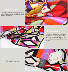 Italian Style Print Cashmere for Men′s Scarf (m072) pictures & photos