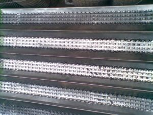 High Rib Mesh 450mmx2200mm for Form-Work Accessories pictures & photos