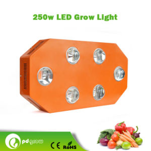 Newest 250 W LED Grow Light for Garden Planting