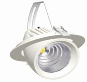 190mm Adjustable LED Downlight 40W