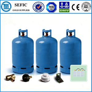 2014 Newest High Quality Camping Gas Cylinder (YSP23.5) pictures & photos
