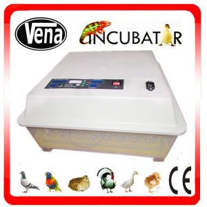 1 Year Warranty Holding 48 Eggs Full Automatic Chicken Egg Incubator for Sale pictures & photos