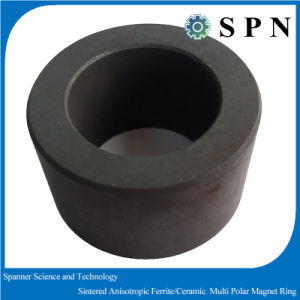 Hard Ferrite Magnet Sintered Multipole T Rings for Micro Motor pictures & photos