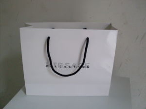Paper Bag with Handle for Packing and Promotion pictures & photos