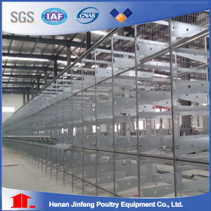 H Type Birds Chicken Cage Poultry Equipment Frame for Farm Use (JFW-08) pictures & photos