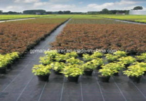 PP Woven Geotextile Fabric Ground Cover pictures & photos