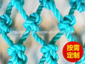 Green PE Netting for Fishing pictures & photos