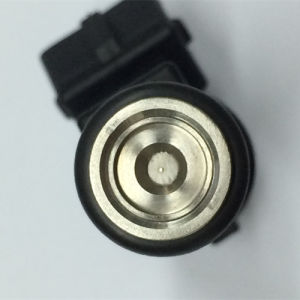 High Quality Fuel Injector 01F002A for Peugeot 206 1.6L pictures & photos