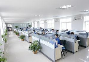 Blue Detergent Powder OEM Factory pictures & photos