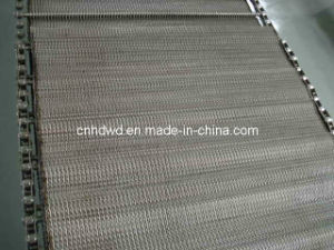 Chain Driven Conveyor Belt (Wire Mesh Belt) pictures & photos