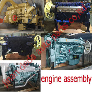 Engine Assy /for Sinotruck, Weichai and Shantui pictures & photos