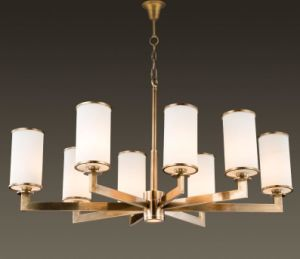 Modern Metal Chandelier with Clinder Glass Shade (WHG-6069) pictures & photos