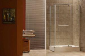 Caml 900*900 Corner Pivot Shower Enclosure/Shower Door/Shower Room (CPT108)