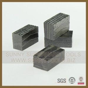 Diamond Segment for Mexico Stone Cutting (SY-SD-3000) pictures & photos
