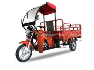 Rickshaw/ Three Wheel Motorcycle/ Tricycle (TR-15) pictures & photos