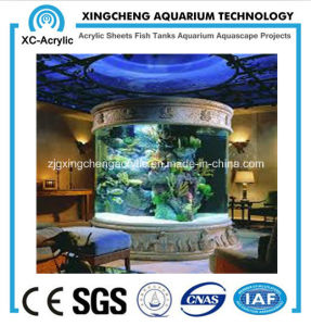 Indoor Large Cylindrical Aquarium pictures & photos