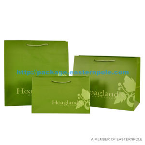 Paper Bag /Promotional Paper Gift Bag/Paper Shopping Bag