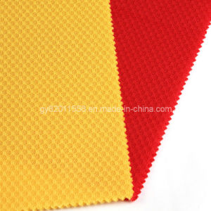Warp Polyester Fabric (47)