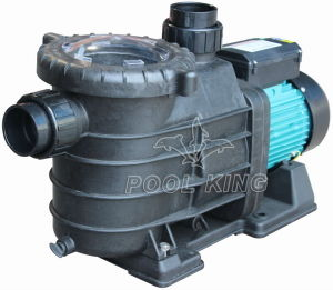 Residential Swimming Pool Pump pictures & photos