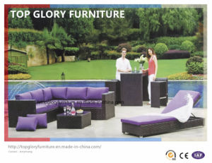 Garden Patio Outdoor PE Rattan Sofa Sets (TG-060) pictures & photos