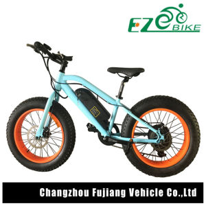 Electric Bicycle with Fat Tire for Children pictures & photos