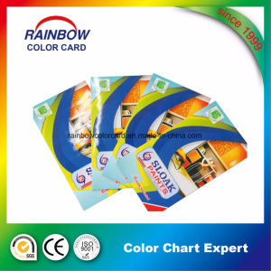 Customized Folded Printing Color Catalog for Paint pictures & photos