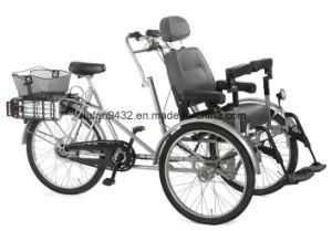 2017 Wheelchair Cycles with 48V / 20 Ah LiFePO4 Battery (DT-043) pictures & photos