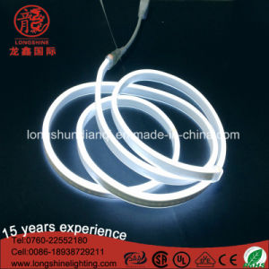 220V LED Flexible Neon Light for outdoor Decoration pictures & photos