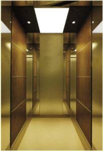Wood Veneer Mirror Passenger Elevator (ALD-KC028) pictures & photos
