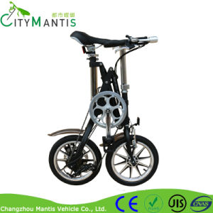 Popular 7sp Aluminum City Folding Bikes pictures & photos