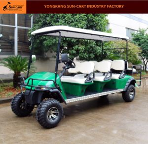 Customized 8 Seater Electric Hunting Golf Cart with Rear Flip Seats) pictures & photos