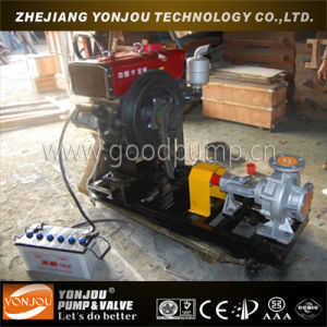 Lqry Hot Oil Pump pictures & photos