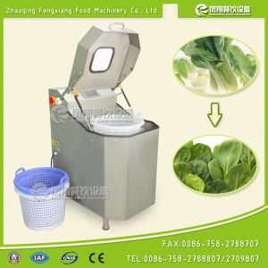 Fzhs-15 Efficient Automatic Digital Vegetable Dehydrator pictures & photos