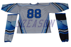 Design Custom Professional Team Hockey Jerseys Practice Jerseys (H017) pictures & photos