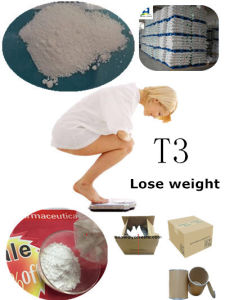 T4 L - Thyroxine Steroids That Burn Fat CAS 51-48-9 Fat Burner Steroids for Losing Weight  pictures & photos
