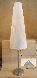 Merry Christmas Style Floor Lamp for Decoration (C5008286) pictures & photos