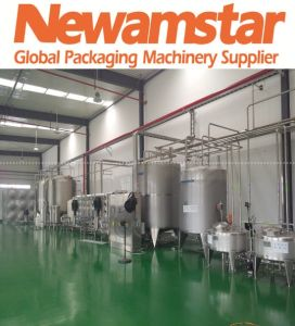 Newamstar Water Treatment Equipment for Beverage Prodcution Machine pictures & photos