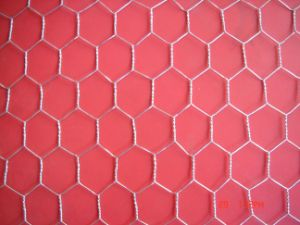 Hexagonal Electro Galvanized Then PVC Coated Chicken Mesh for Poultry pictures & photos