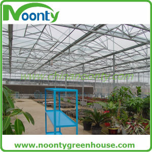 Multi-Span Agricultural Greenhouses Type and Dutch Bucket for Hydroponic System pictures & photos
