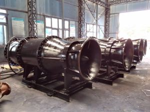 Submersible Tubular-Type Axial-Flow Pump pictures & photos