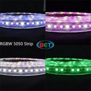 84LED/M 50m/Roll Color Strip LED Strip Light RGBW pictures & photos