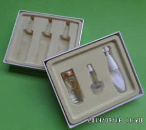 Plastic Tray&Container Blister Packaging pictures & photos