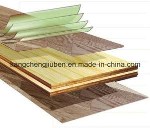 Naturaloak Wood Parquet/Laminate Flooring (SY-01) pictures & photos