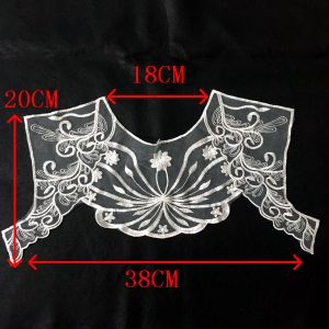 Fashion Design Embroidery Lace Collar for Dresses pictures & photos