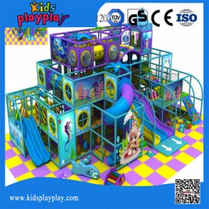 Big Discount Funny Good Price Interior Playground Structure Inside Playground pictures & photos