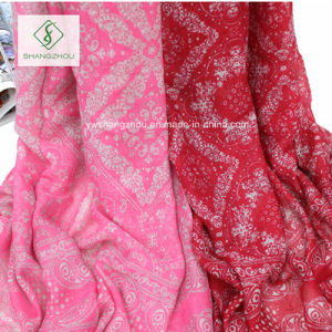 Large Size Dyeing Cashew Printed with Tassels Lady Fashion Scarf pictures & photos