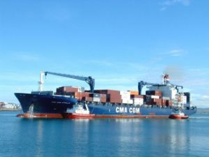 Ningbo/China Container Shipping / Trailer Logistics to Oranjestad Aruba Bridgetown pictures & photos